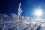 Winter480
