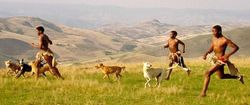SouthAfrica_Zulu_Hunting_with_Dogs