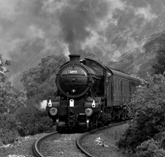 Highland Steam Train