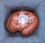 Brain-as-circuits