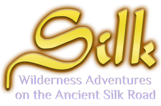 Silk Title with Tagline.8Feb19
