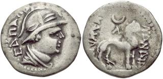 Sapadbizes Coin