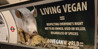 Vegan Ad