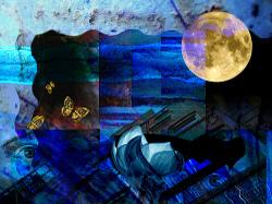 Night_vision_by_maureen_shaughnes_2