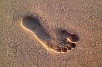 Footprint_3